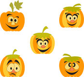 Orange Pumpkins Illustrations, Cartoon Pumpkins. Orange and yellow cartoon pumpkins, smiling pumpkins, green leaves, food, vegetables, plants, flora, Halloween Stock Images