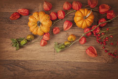 Orange pumpkins and physalis Stock Photography