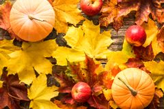 Orange pumpkins with red apples autumn leaves on wooden background royalty free stock photography