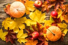 Orange pumpkins with red apples autumn leaves on wooden background royalty free stock images