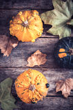 Orange pumpkins Royalty Free Stock Photos
