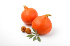 Orange pumpkins wtih walnuts and sage Stock Images