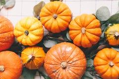 Orange pumpor på den vita tabellen i kafé royaltyfria bilder