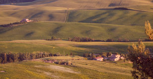 Orange and purple colored field in Tuscan landscape at sunset Royalty Free Stock Photography