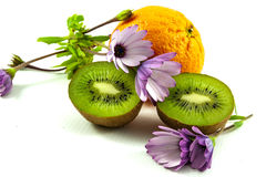 Orange, daisies and kiwifruit Stock Photos