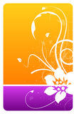 Orange and purple floral design card. With grunge pattern Royalty Free Stock Images