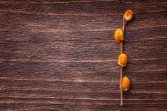 Orange pussy-willow flowers on a vintage wood surface Royalty Free Stock Photo