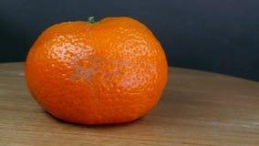 Orange putréfiée et moisie banque de vidéos
