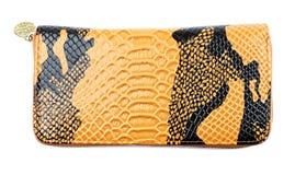 Orange Python Leather wallet Royalty Free Stock Photos
