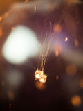 Orange Quallen in der Dunkelheit Stockfotos