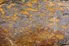 Orange Quartzite Rock Royalty Free Stock Photography