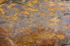 Orange Quartzite Rock. Natural texture background of stone Quartzite Royalty Free Stock Photography