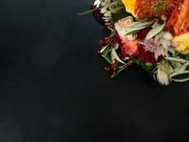 Orange röd bakgrund för höstblommamörker royaltyfri fotografi
