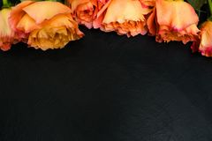 Orange röd bakgrund för höstrosmörker royaltyfria bilder
