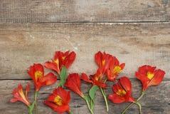 Orange rött utrymme för kopia för bakgrund för copmosition för ordning för Alstromeria blommabukett lantligt trä Royaltyfria Foton