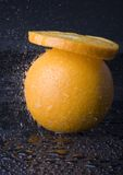 Orange in rain Stock Photography