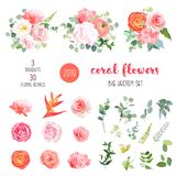 Orange ranunculus, pink rose, hydrangea, coral carnation, garden. Flowers, greenery and decorative plants big vector set. Living coral 2019 trendy color stock illustration