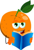Orange reading Stock Photos