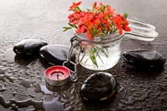Orange Red Freesia Laxa flowers in glass container with massage Royalty Free Stock Photo