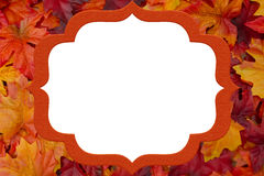 Orange and Red Leaves Frame for your message or invitation Royalty Free Stock Image