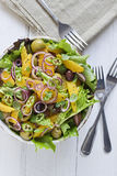 Orange and Red Onion salad Stock Images