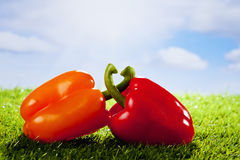 Orange and red paprika on grass, copy space Stock Photo