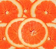Orange red roud slices cut for background Royalty Free Stock Photo