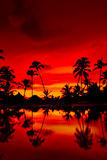 Orange and red sunset over sea beach with palms Stock Photo