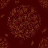 Orange Red Tree on Brown Red Background Stock Photos