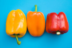 Orange, red and yellow sweet peppers Stock Photos