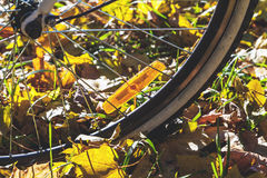 Orange reflectors on spokes of bicycle autumn day Royalty Free Stock Images