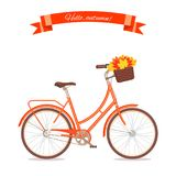 Orange retro bicycle with autumn leaves in floral basket and box on trunk. Color bike isolated on white background. Flat vector il. Lustration. Cycle with leaves Royalty Free Stock Photo