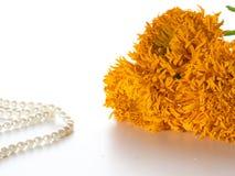Orange ringblommar Arkivfoto