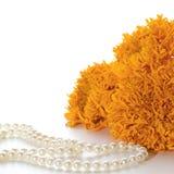 Orange ringblommar Fotografering för Bildbyråer
