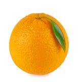 Orange ripe oranges with leaf Royalty Free Stock Image