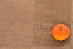 Orange ripe pumpkin Royalty Free Stock Photography