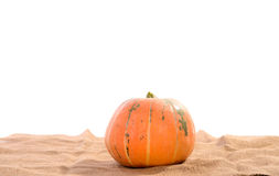 Orange ripe pumpkin Royalty Free Stock Photos