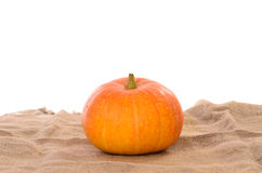 Orange ripe pumpkin Stock Images