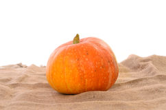 Orange ripe pumpkin Stock Image
