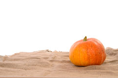 Orange ripe pumpkin Stock Photography