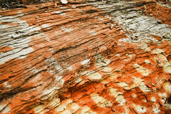 Orange Rock. The dramatic dry skin of hardened orange river bed rock Royalty Free Stock Photos