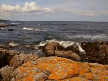 Orange rocks Bornholm. Colorful, mostly yellow-orange rocks on the Baltic coast in the village Melsted on the Danish island of Bornholm stock photos