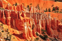The orange rocks from sandstone in park Stock Photography