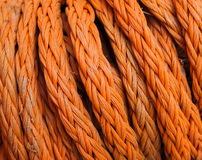 Orange Rope. In closeup detail Royalty Free Stock Photography
