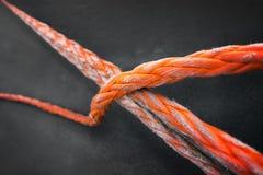 Orange rope on grey Royalty Free Stock Image