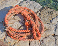 Orange rope Stock Image