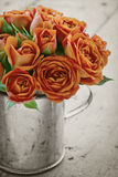 Orange rose on black and white background Stock Photography