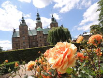 Orange rose, with blurred castle in the back. Orange rose. With a blurred castle in the back. Castle = Rosenborg Castle, Kopenhagen, Denmark, Europe royalty free stock images