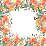 Orange rose bouquet floral botanical flowers. Watercolor background illustration set. Frame border ornament square. Orange rose bouquet floral botanical flowers royalty free illustration
