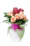 Orange rose flowers Royalty Free Stock Photography